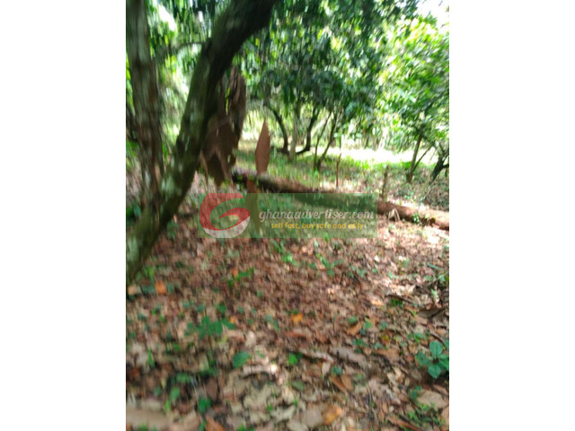 AFFORDABLE LAND FOR SALE - 2