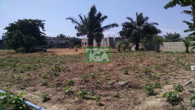 FOR SALE: 1 Plot of Land (70ft x 100ft) for sale in TSE ADDO - 1