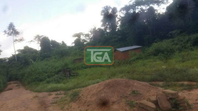 An acre of land for sale at Adawso - 1