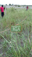 2 plots of land for sale at amasaman 14,000ghc,