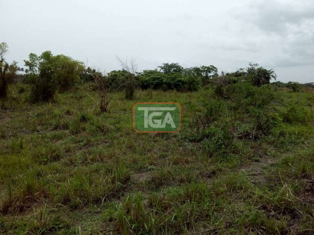 2 plots of land for sale at amasaman 14,000ghc, - 2