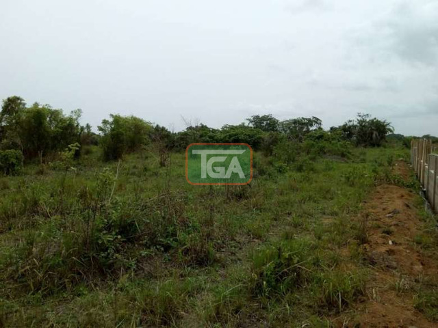 2 plots of land for sale at amasaman 14,000ghc, - 3