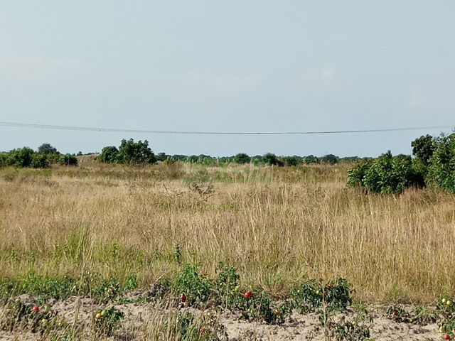 LAND @TSOPOLI BUEKO FOR SALE - 1