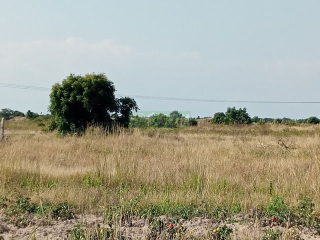 LAND @TSOPOLI BUEKO FOR SALE - 2