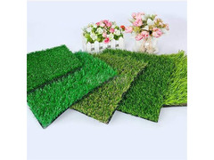 Carpet grass