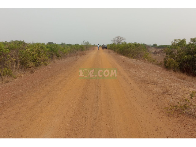 TITLED LAND AT DAWA FOR SALE - 1