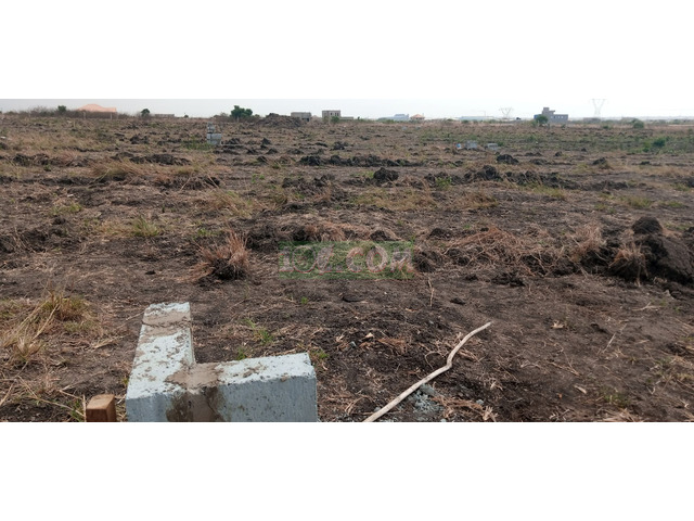 NEATLY DEMARCATED PLOT AT COMM.25 - 2