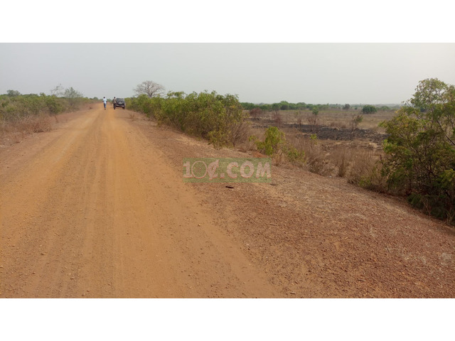 CERTIFIED LAND AT DAWA FOR SALE - 1