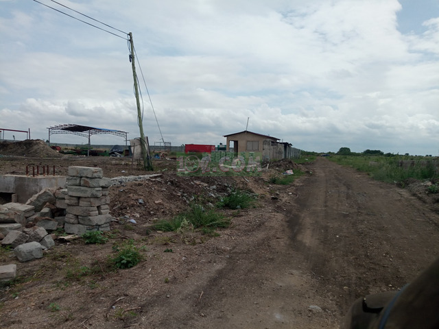 Full plots at Miotso-Prampram - 2