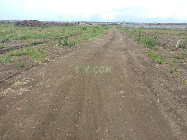 Full plots at Miotso-Prampram - 3
